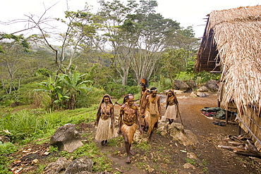 People at village at the coffee plantation, Langila, Highlands, Papua New Guinea, Oceania