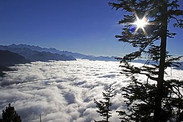 Switzerland, Stanserhorn, Fog, swiss alps, Vierwaldstaetter See