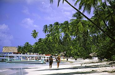 Palm trees, Dream beach, Pigeon Point, Tobago