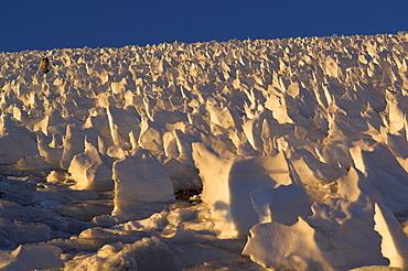 albert leichtfried geht durch den buesserschnee am plateau des Cerro Marmolejo 6085 m, chile