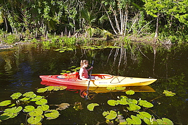 Kayaking in Big Cypress National preserve which is part of the Everglades, Florida, USA