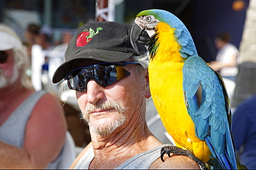 Man with parrot, Fort Myers Beach, Florida, USA