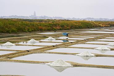 Salt-pans marais salants of GuÈrande, dept Loire-Atlantique, France, Europe
