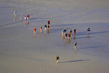 Wanderers at low tide at the Mont St-Michel, Baie du Mont St-Michel, Normandie, dept Manche, France, Europe