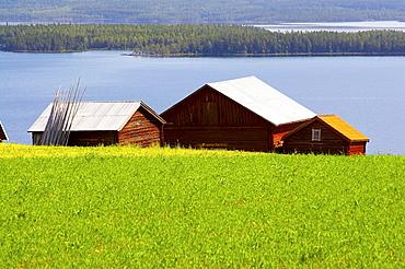 Farmhouses between Hovermo and Vigge am lake Myrviken, Jaemtland, northern Sweden