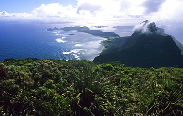 Top of Mt. Gower, view at Mt. Lidgbird, Lord Howe Island, Australia