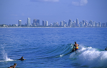 Surfers at Burleigh Heads, Sufers Paradise in the background, Gold Coast, Queensland, Australia