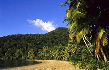 Brammo Bay, the main beach of the Dunk Island Resort, Dunk Island, Great Barrier Reef, Australia