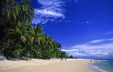 Palm Hideaway on the northside of the island, Bedarra Island, Great Barrier Reef, Australia