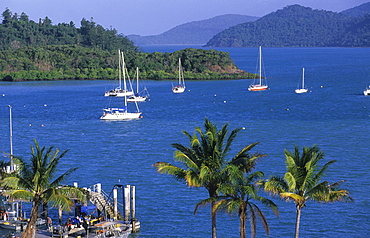 Shute Harbour is the gateway to the Whitsunday Islands, Great Barrier Reef, Australia