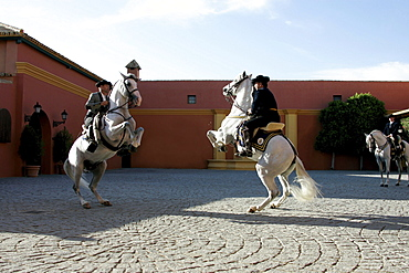 Two men on horseback, Hotel Hacienda La Boticaria, Vega de Alcala de Guadaira, near Sevilla, Andalusia, Spain, Europe
