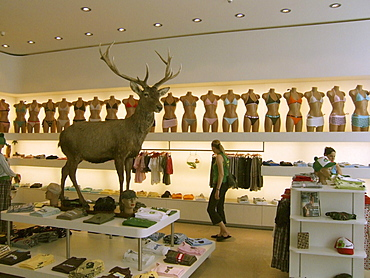 Switzerland, Zurich, Alpenrausch fashion shop
