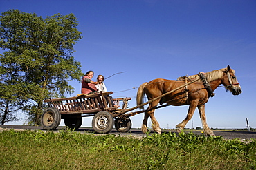 Women on a horse cart in the area of Vilnius, Lithuania