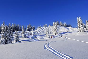 Snow-covered mountain scene in ski resort, Riedberger Horn, ski resort Grasgehrenlifte, Obermaiselstein, Oberstdorf, Allgaeu range, Allgaeu, Swabia, Bavaria, Germany