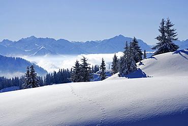 Snow-covered mountain scene, Riedberger Horn, ski resort Grasgehrenlifte, Obermaiselstein, Oberstdorf, Allgaeu range, Allgaeu, Swabia, Bavaria, Germany