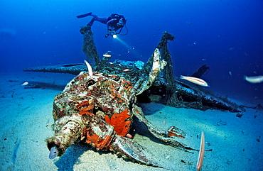 Messerschmidt 109 and scuba diver, Mediterranean Sea, Ile de Planier, Marseille, France