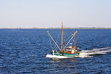 Fishing cutter, Norderney, East Frisia, North Sea, Lower Saxony, Germany