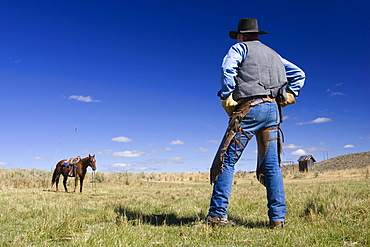 Cowboy with horse, wild west, Oregon, USA