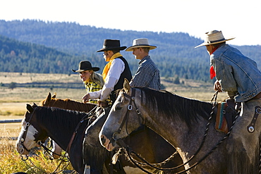 cowgirl and cowboys sitting on horses, wildwest, Oregon, USA
