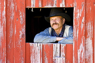 cowboy looking out of barn-window, wildwest, Oregon, USA