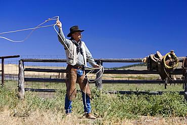 Cowboy throwing lasso wildwest, Oregon, USA