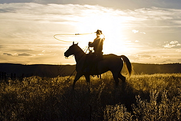 cowboy at sunset, Oregon, USA