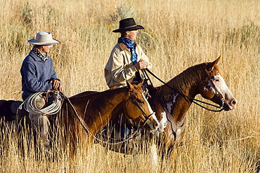 cowboys on horses, Oregon, USA