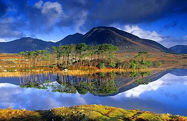 Europe, Great Britain, Ireland, Co. Galway, Connemara, Ballynahinch Lake