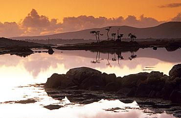 Europe, Great Britain, Ireland, Co. Galway, Connemara, Camus Bay