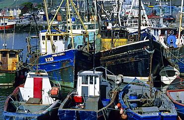 Europe, Great Britain, Ireland, Co. Kerry, Dingle peninsula, harbour in Dingle