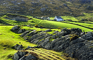 Rural landscape with farmhouses in the Ring of Beara, near Allihies, Co. Cork, Ireland, Europe