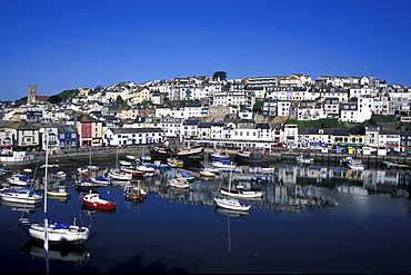 View over harbour with boats, Brixham, Devon, England, United Kingdom
