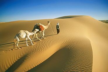 Caravan, camels and a man walking over a dune, Grand Erg Occidental, Sahara, Algeria, Africa