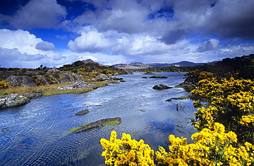 Coast area under rain clouds, Ring of Beara, Beara peninsula, County Kerry, Irland, Europa