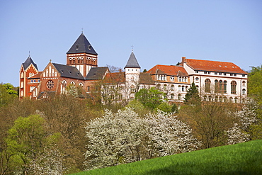 House of the Steyler Mission at St. Wendel in spring, Saarland, Germany, Europe