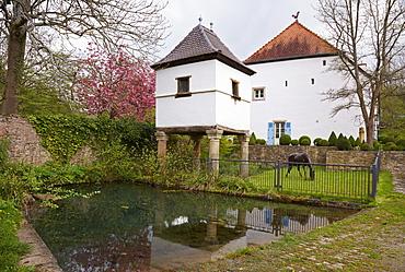 Pigeonry at Graefinthal in spring, Mandelbachtal, Bliesgau, Saarland, Germany, Europe