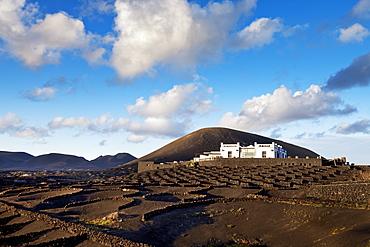 Winery Bodega La Geria, wine growing district La Geria, Lanzarote, Canary Islands, Spain, Europe