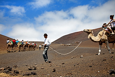 People riding camels in volcanic landscape, Timanfaya National Park, Lanzarote, Canary Islands, Spain, Europe