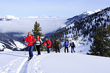 Group of people backcountry skiing, ascending to Pallspitze, Pallspitze, Langer Grund, Kitzbuehel Alps, Tyrol, Austria
