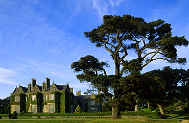 View at mansion Muckross House beside trees, Killarney National Park, County Kerry, Ireland, Europe