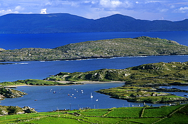 Coast area in the sunlight, Derrynane Bay, Ring of Kerry, County Kerry, Ireland, Europe