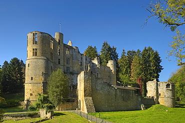 Beaufort castle in the sunlight, Beaufort, Echternach, Luxembourg, Europe