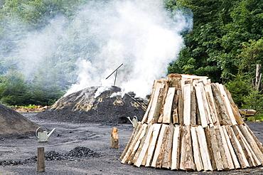 Charcoal burner Stemberghaus, Harz, Saxony-Anhalt, Germany
