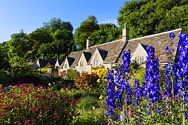 Houses and flowers in the sunlight, Bibury, Gloucestershire, Cotswolds, England, Great Britain, Europe