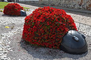 Ladybug flower planters, Ventspils, Latvia, Baltic States, Europe