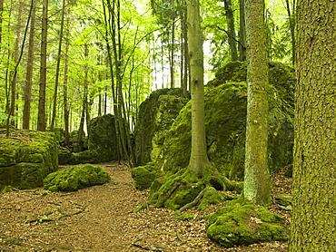 Druidenhain, Little Switzerland, Upper Franconia, Bavaria, Germany
