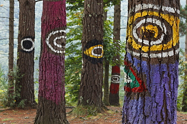Painted trunks of trees, El bosque pintado de Oma, El bosque animado de Oma, Miran igual que tu, They are looking like you, Kortezubi, Guernica, natural reserve of Urdaibai, province of Bizkaia, Basque Country, Euskadi, Northern Spain, Spain, Europe
