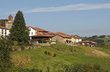 Horreo, traditionel storehouse, granary, Torazo, near Infiesto, province of Asturias, Principality of Asturias, Northern Spain, Spain, Europe