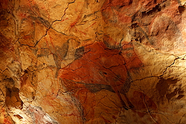 Bison, prehistoric painting, cave painting, about 25000 BC, Cueva de Altamira, Hoehle bei San Santillana del Mar, Kantabrien replica, Parque de la Prehistoria de Teverga, Teverga, Park of Prehistory in Teverga, province of Asturias, Principality of Asturias, Northern Spain, Spain, Europe