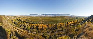 railway line along Ebro river, Rio Ebro, vinyards, near Haro, autumn, La Rioja, Northern Spain, Spain, Europe